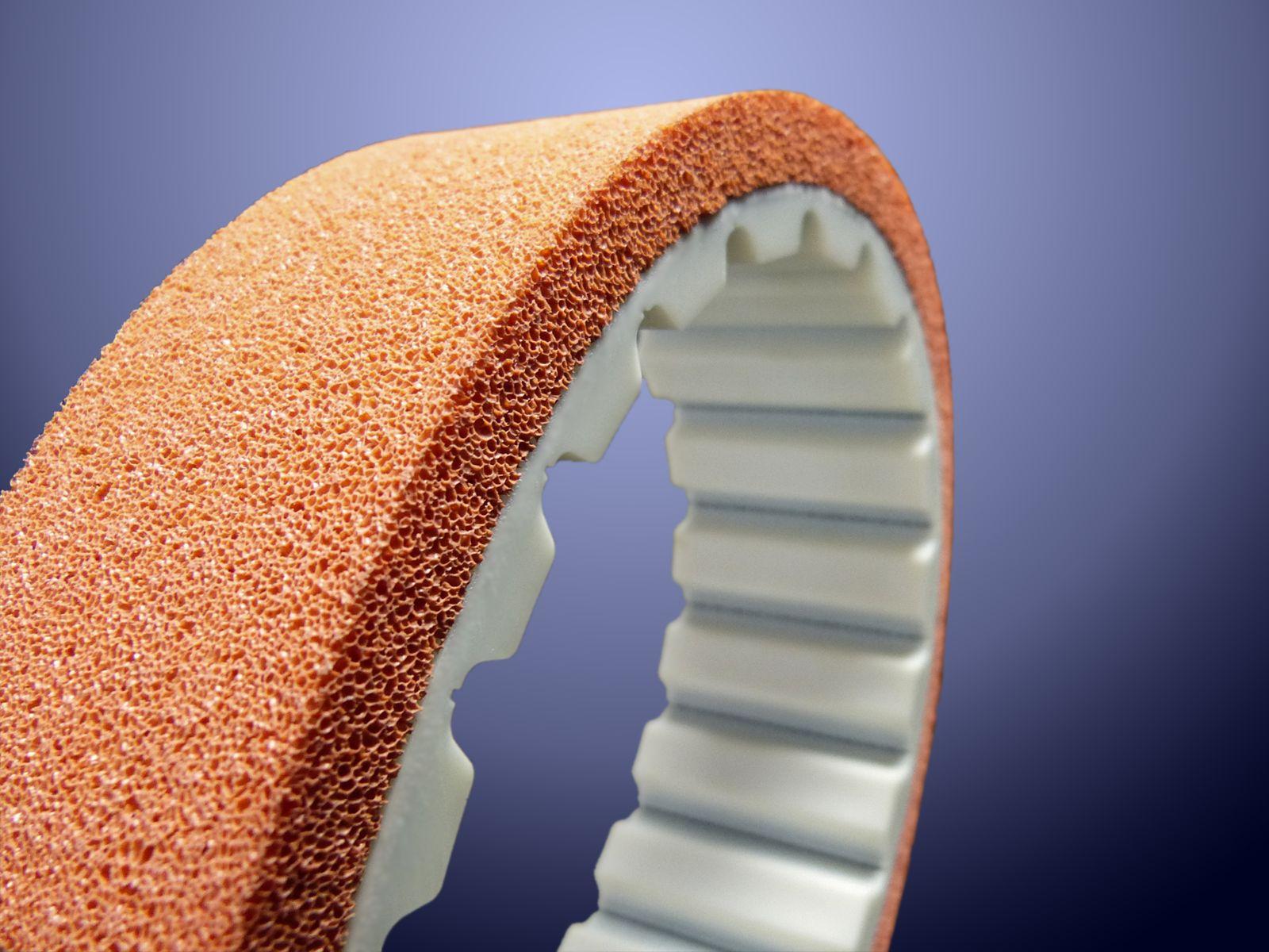 Cinghia dentata AT10 con gomma geranio con cellule porosità media